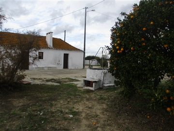 Detached house T1 / Palmela, Pinhal Novo