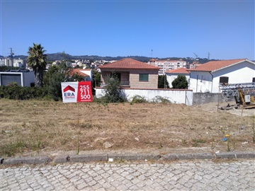 Lot / Penafiel, 2- Guilhufe