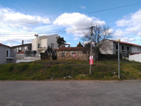 Lot / Vila Real, Mateus