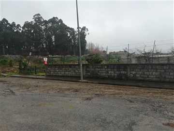Lote / Barcelos, Cambeses