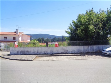 Lote / Viana do Castelo, Barroselas